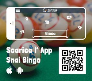 bingo snai