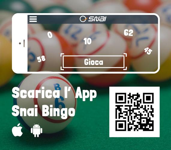 Come giocare a Bingo Online con la SNAI